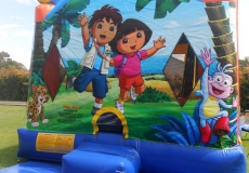 Dora & Diego 6
